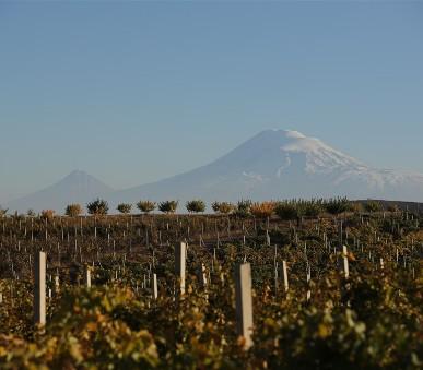 Vinařská Arménie