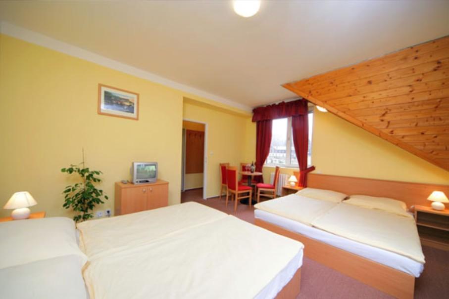 Hotel Harrachov Inn (fotografie 5)