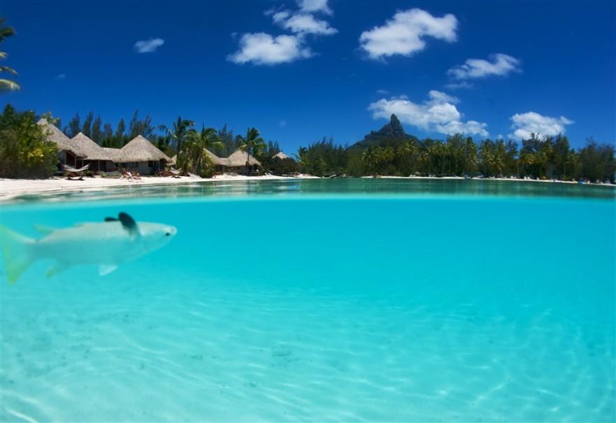 Hotel Le Meridien Bora Bora (fotografie 16)