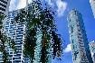 Singapur - perla Asie od A do Z (fotografie 30)