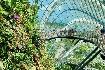 Singapur - perla Asie od A do Z (fotografie 47)