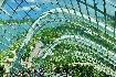 Singapur - perla Asie od A do Z (fotografie 48)