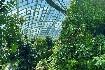Singapur - perla Asie od A do Z (fotografie 51)