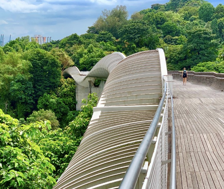 Singapur - perla Asie od A do Z (fotografie 114)