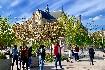 Romantická Paříž a Versailles (fotografie 46)