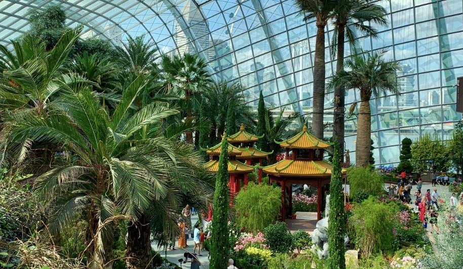 Singapur - perla Asie od A do Z (fotografie 53)
