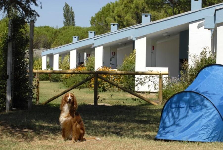 Villaggio Marina Julia Camping (fotografie 57)