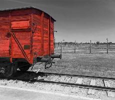 Koncentrační tábor Osvětim a Solný důl Wieliczka