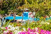 Hotel Diani Sea Resort (fotografie 2)