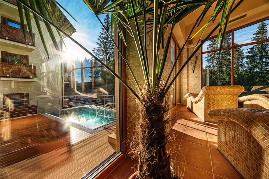 Hotel Ski & Wellness Residence Družba (fotografie 38)