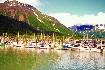 Luxusní plavby - plavba na Aljašku (fotografie 5)