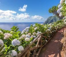 Nespoutané Azorské ostrovy