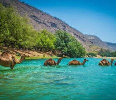 Omán - vůně Orientu z pohádek tisíce a jedné noci