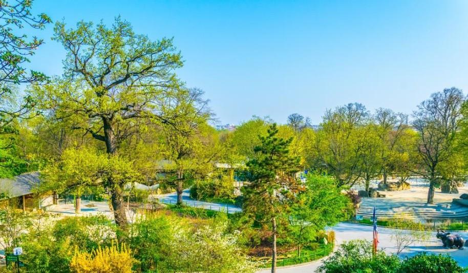 Zoo Vídeň + Schönbrunn (fotografie 21)