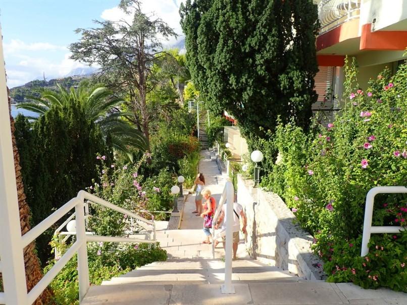 Hotel Aurora (fotografie 6)