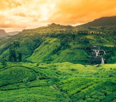 Krásy Srí Lanky - akce senior 50+