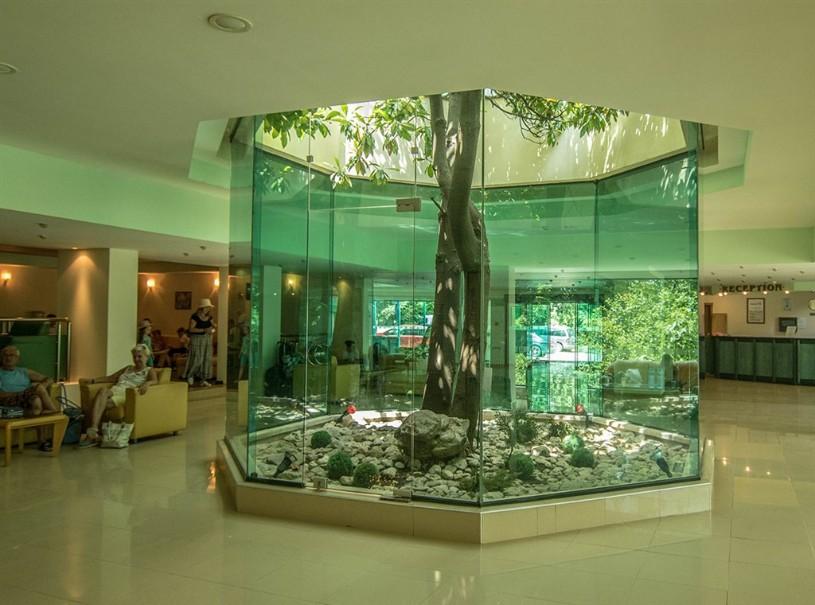 Hotel Magnolia (fotografie 6)
