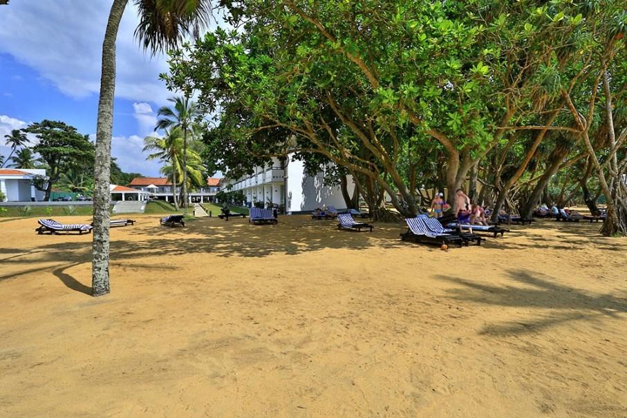 Hotel Hibiscus Beach (fotografie 10)