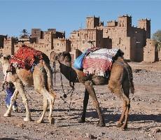 Okruh Marockým královstvím mezi Saharou, Atlasem a Atlantikem