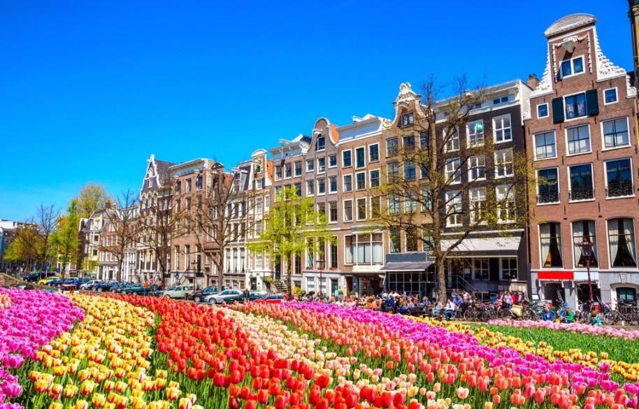 Za chutí sýrů, mlýny do Amsterdamu a Zaanse Schans s návštěvou města Alkmaar (fotografie 8)