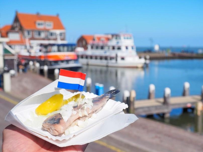 Za chutí sýrů, mlýny do Amsterdamu a Zaanse Schans s návštěvou města Alkmaar (fotografie 16)