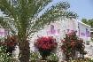 Hotel Merit Cyprus Garden (fotografie 3)