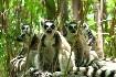 Madagaskar a Mauricius (fotografie 1)