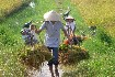 Vietnam a Kambodža (fotografie 9)
