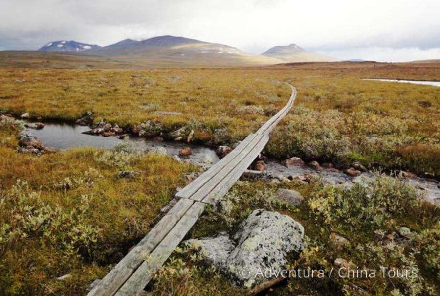 Švédským Laponskem z Abiska pod Kebnekaise (fotografie 14)