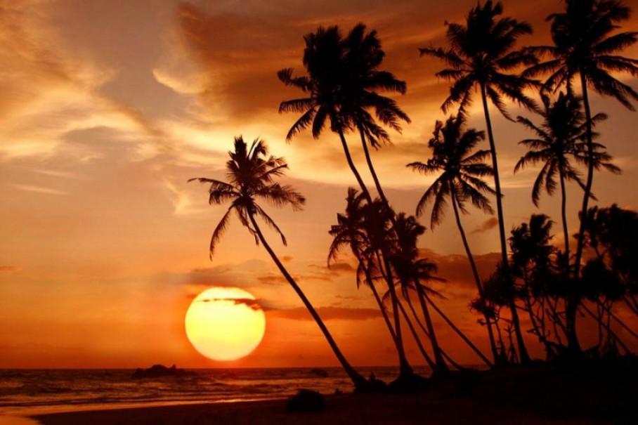 Hotel Calamander Beach Resort (fotografie 31)