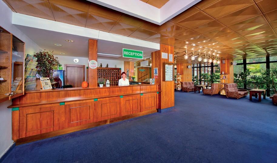 Wellness Hotel Svornost (fotografie 15)