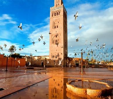 Casablanca + Marrakeš