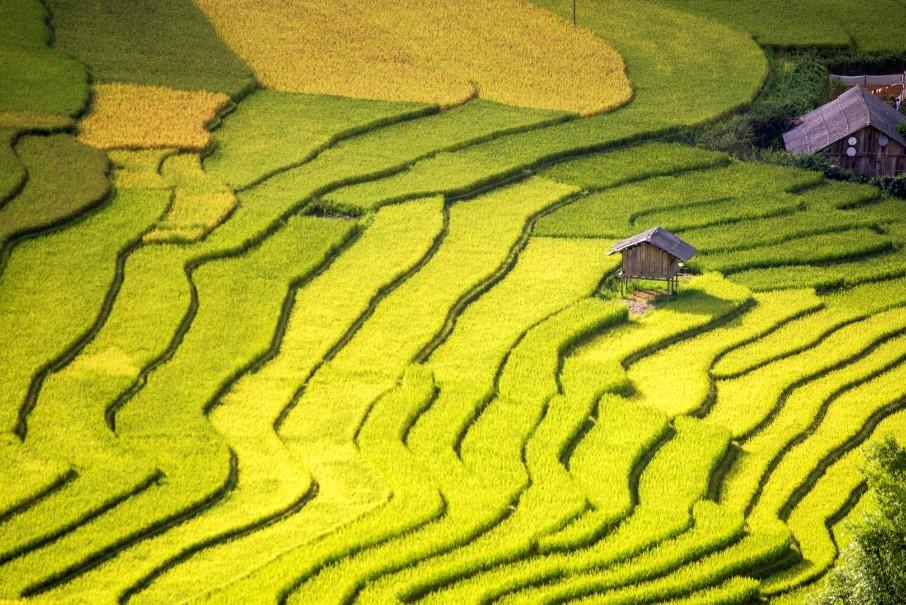 Hory a ostrovy severního Vietnamu (fotografie 18)