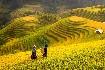 Hory a ostrovy severního Vietnamu (fotografie 1)