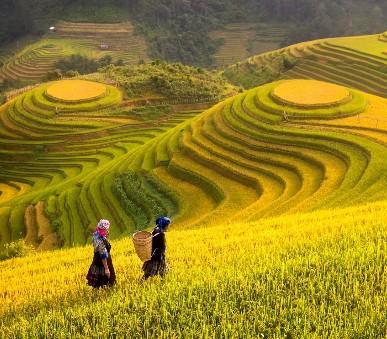 Hory a ostrovy severního Vietnamu (hlavní fotografie)