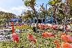 To nejlepší z Miami + NP Everglades + NASA + Bahamy (fotografie 13)