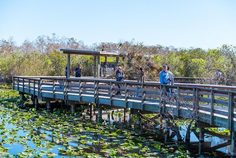 To nejlepší z Miami + NP Everglades + NASA + Bahamy (fotografie 23)