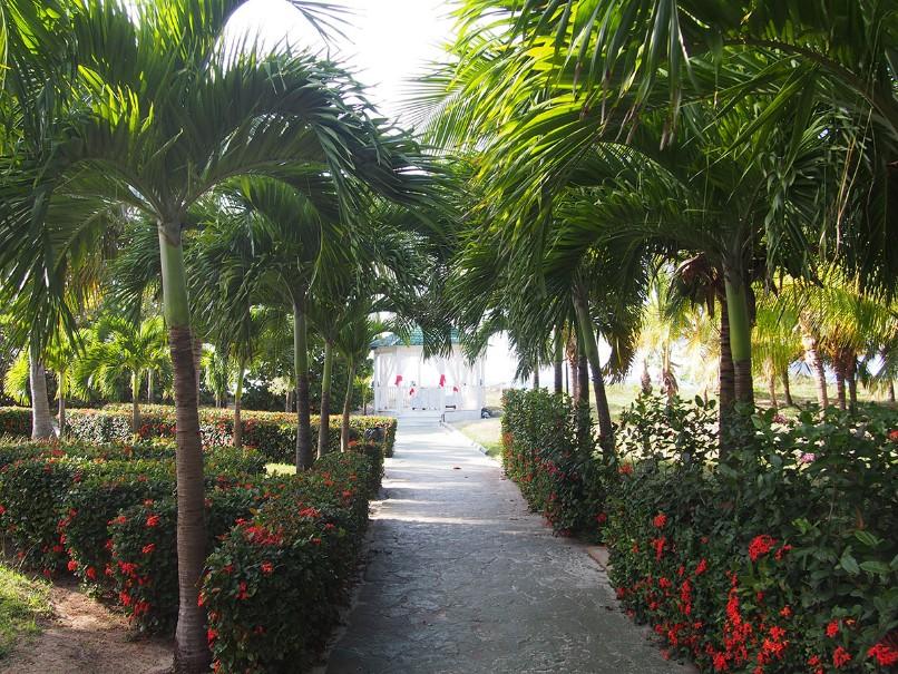 Hotelový komplex Barcelo Solymar Beach Resort (fotografie 7)