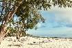 Hotelový komplex Kiwengwa Beach Resort (fotografie 15)