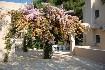 Hotel Marbella (fotografie 5)
