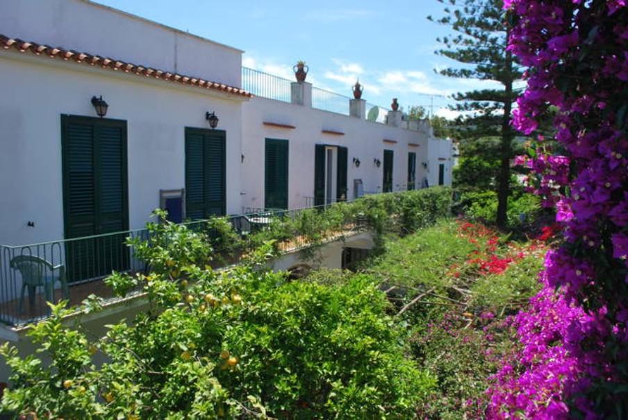 Hotel Pineta (fotografie 4)