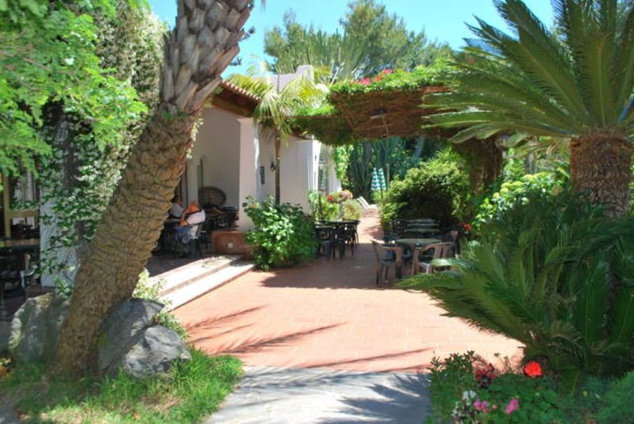 Hotel Pineta (fotografie 9)