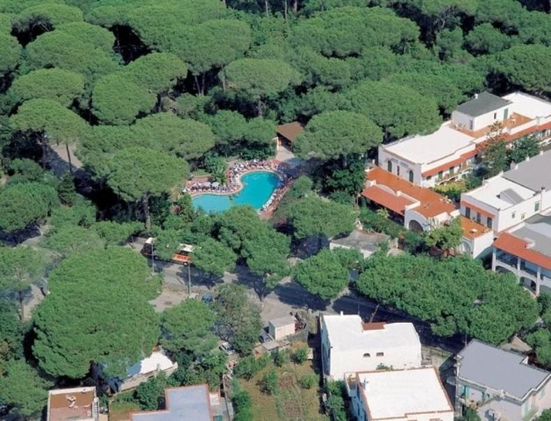 Hotel Pineta (fotografie 11)