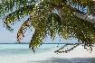 Biyadhoo Island Resort Hotel (fotografie 2)