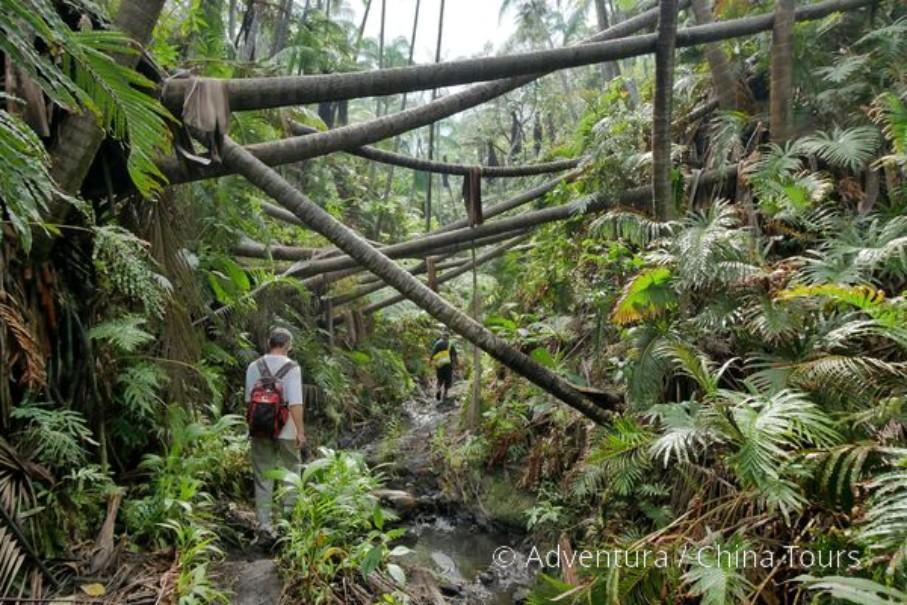 Treking v jižním Pacifiku – Fidži a Vanuatu 2020 (fotografie 10)