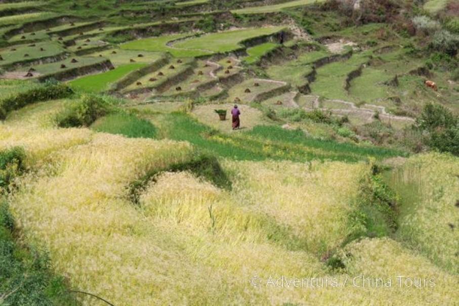 Bhútán na kole v pohodě (fotografie 6)
