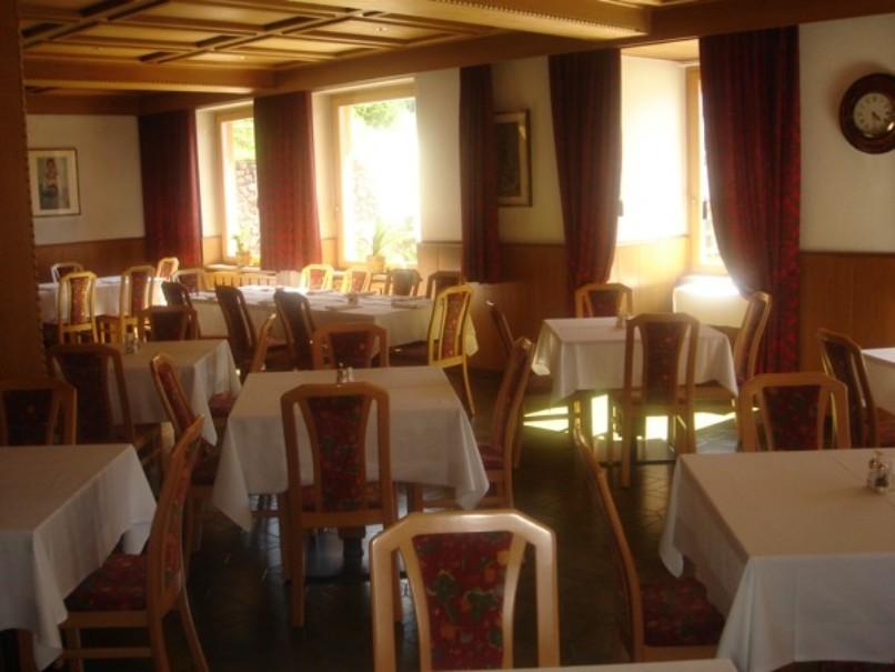 Hotel Alpino Plan (fotografie 18)