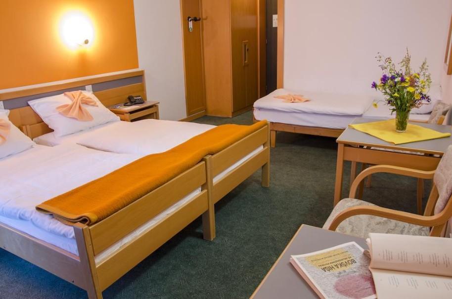 Hotel Alp (fotografie 7)