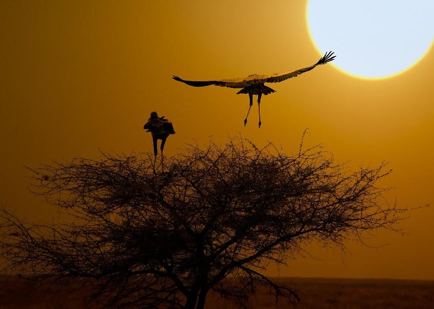 Namibie - Svůdná a nepoznaná | Program od 2020 (fotografie 29)