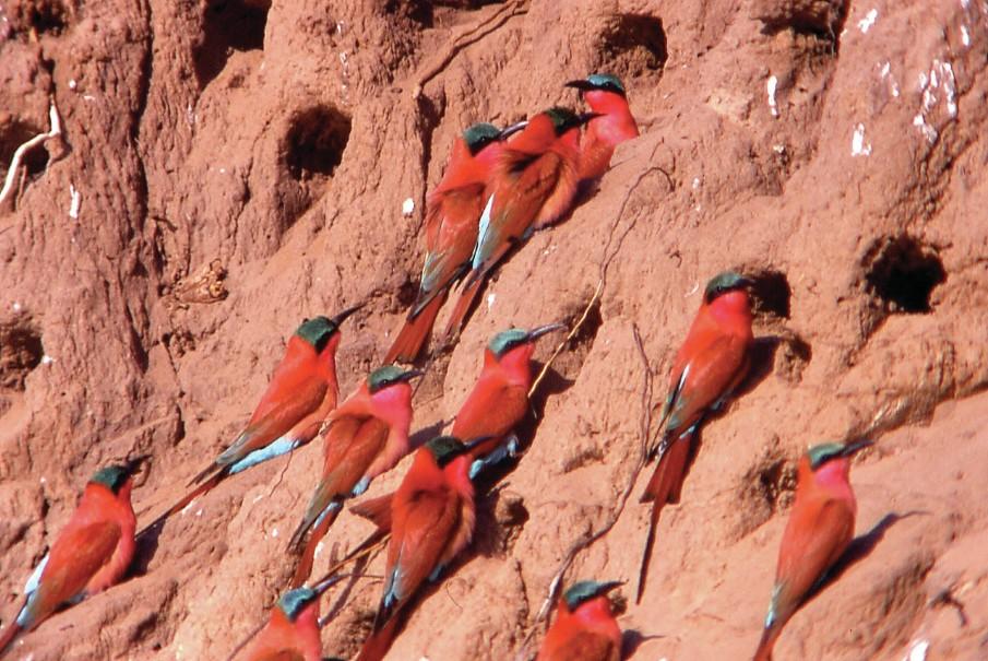 Namibie - Svůdná a nepoznaná | Program od 2020 (fotografie 30)